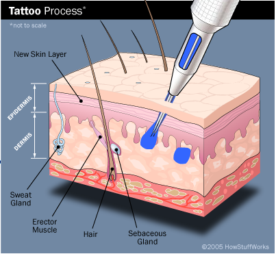 tattooprocess